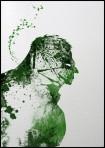 Arian Noveir Hulk