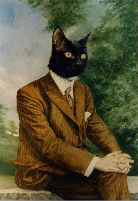 Mister Classy Cat